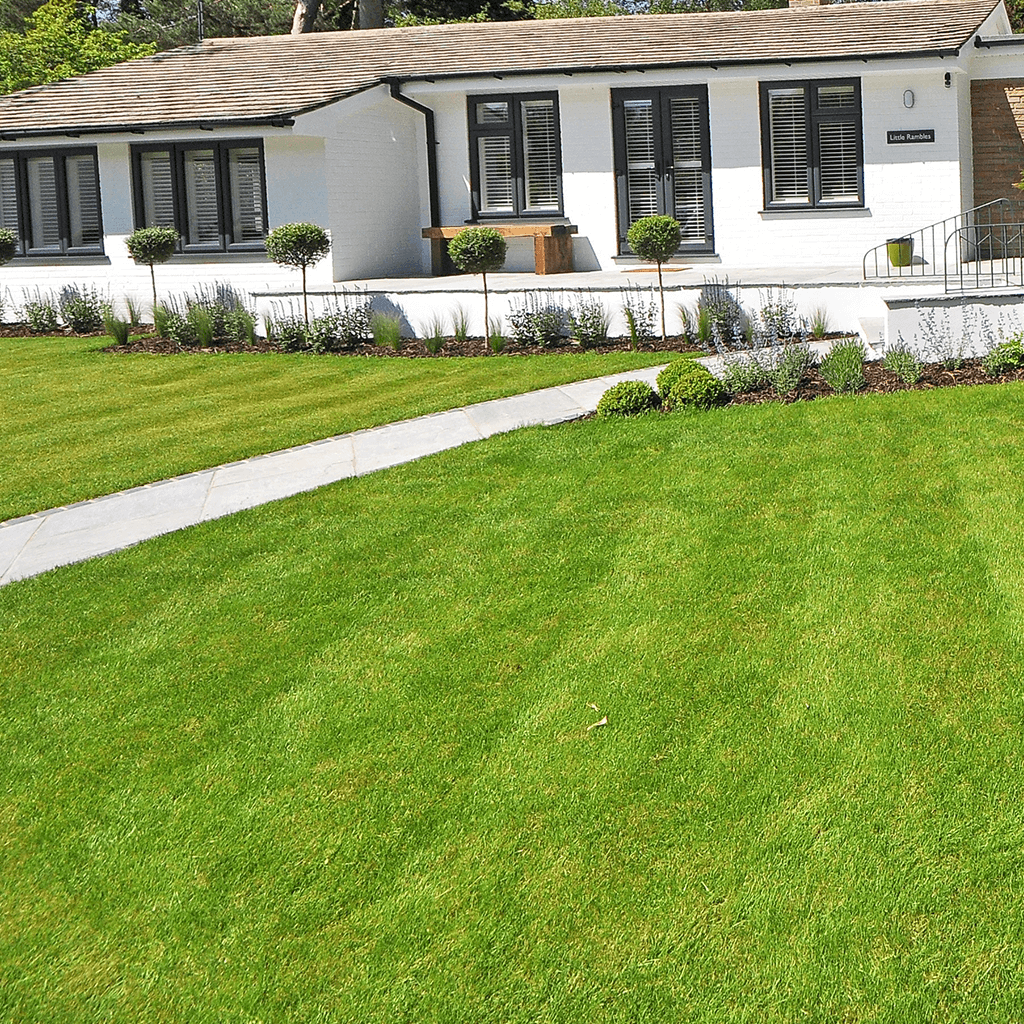 3 ways to manage Lawn Care Work with a busy schedule