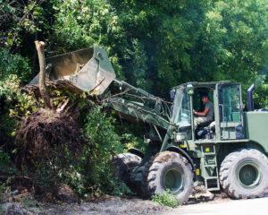 Brush Removal in Tulsa, Oklahoma